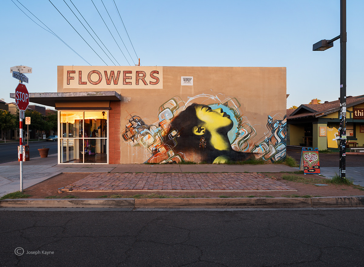 flowers,arizona,street,art,el,mac,augustine,kolfie, photo