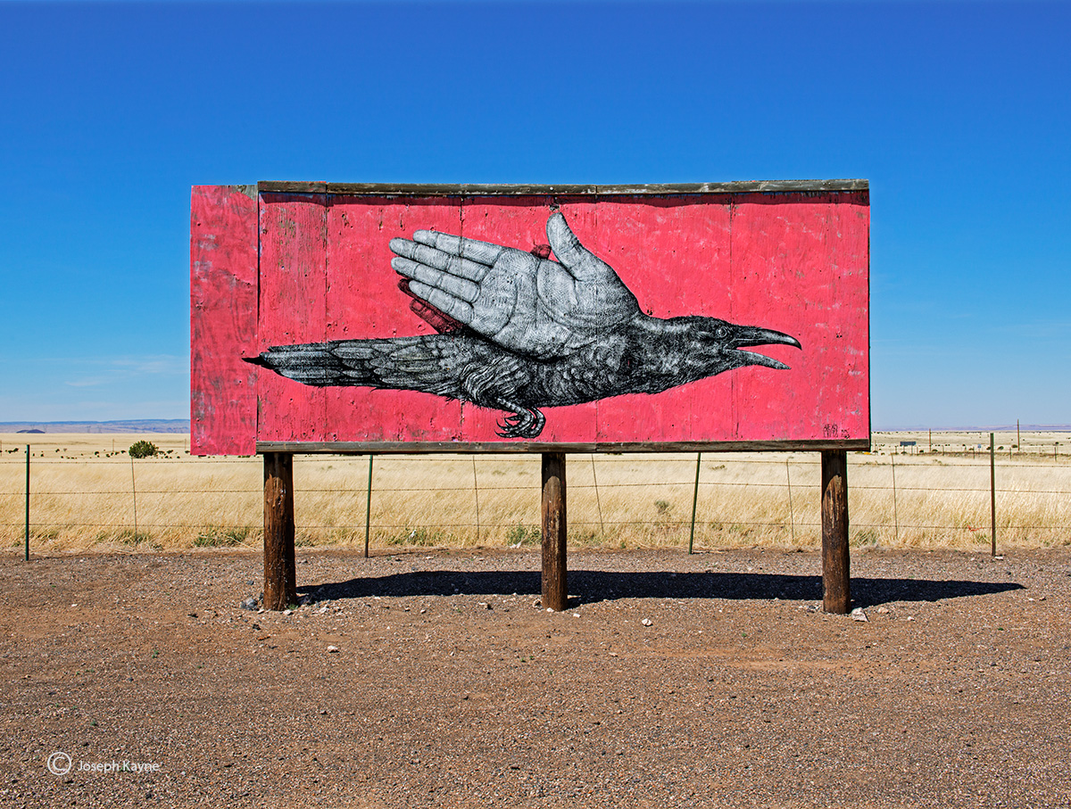 alexis,diaz,street,art,navajo,nation,arizona,painted,desert,project, photo