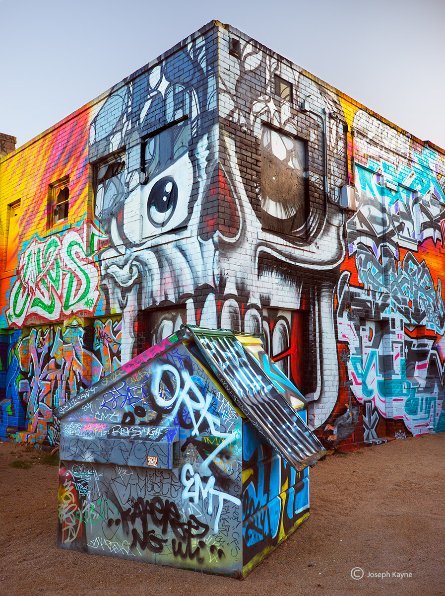 alley,guardian,arizona,street,art, photo