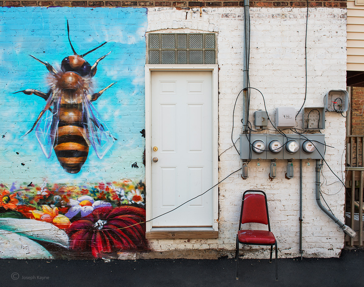 hive,entry,chicago,street,art,bee, photo