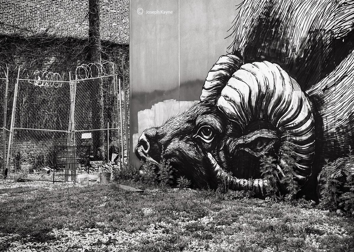ROA,big,horn,sheep,chicago,street,art, photo