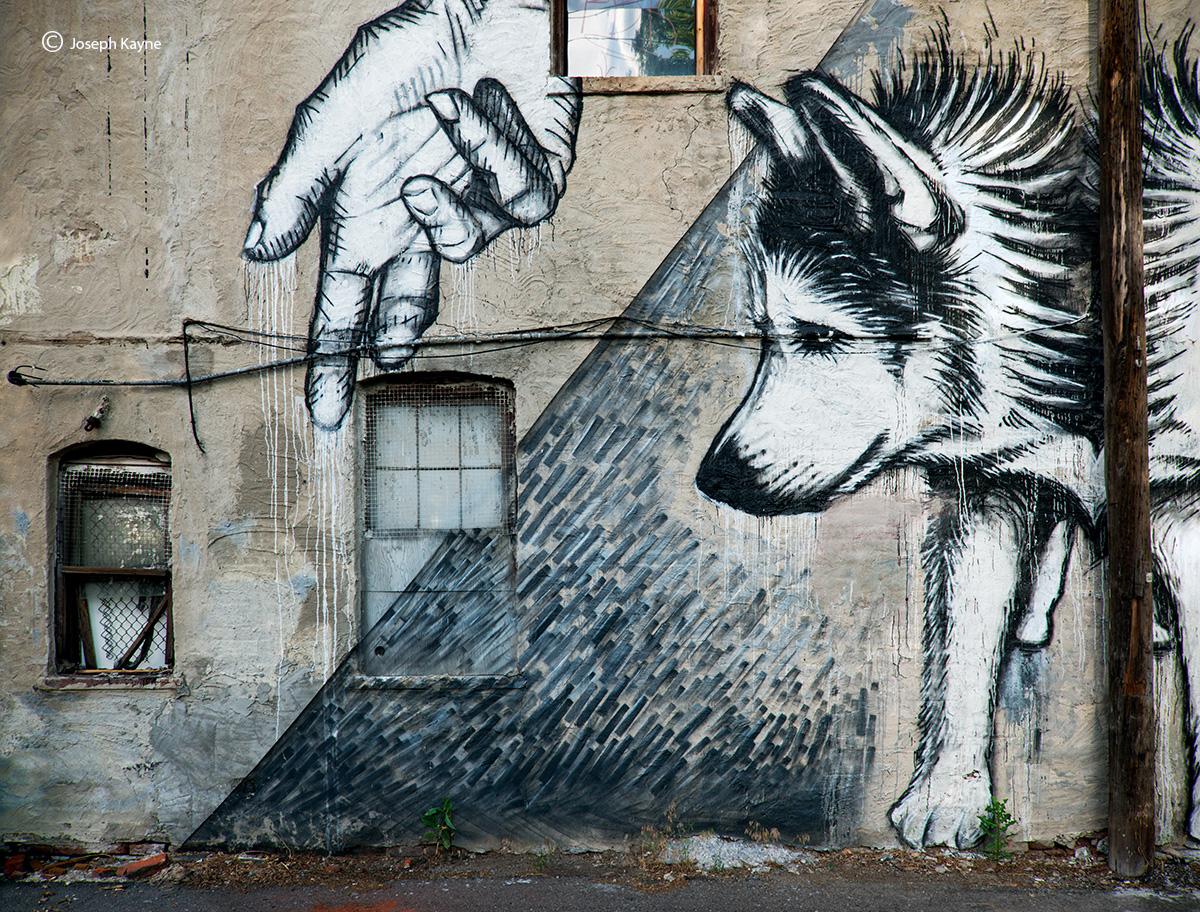 guardian,denver,street,art, photo