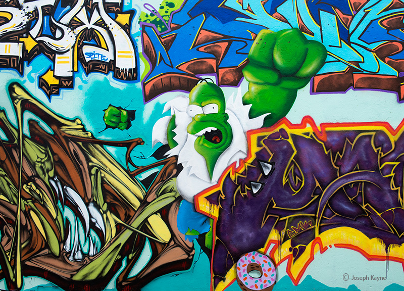homer,simpson,huld,graffiti,chicagi, photo