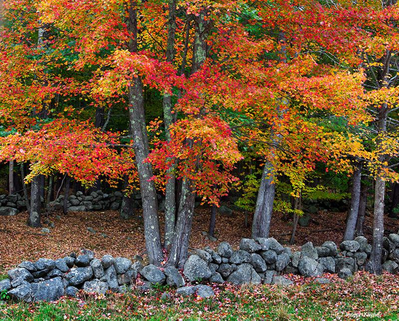 New England Countryside