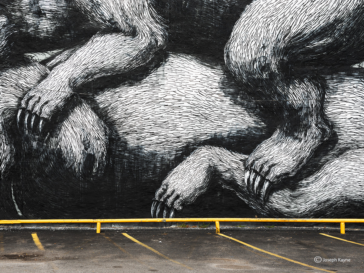 parking,lot,ROA,mural,detail,rochester,new,york, photo
