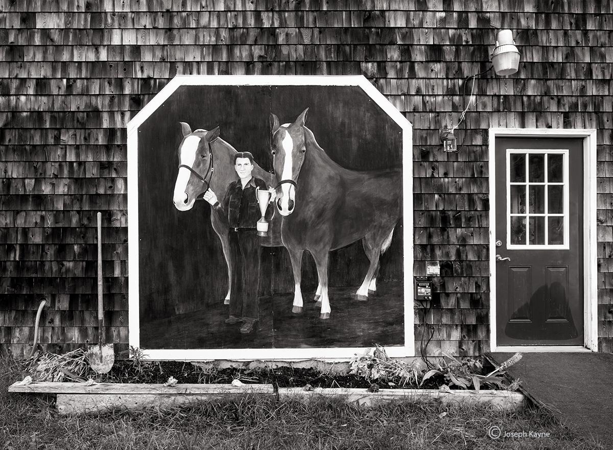 maune,garden,horse,mural, photo