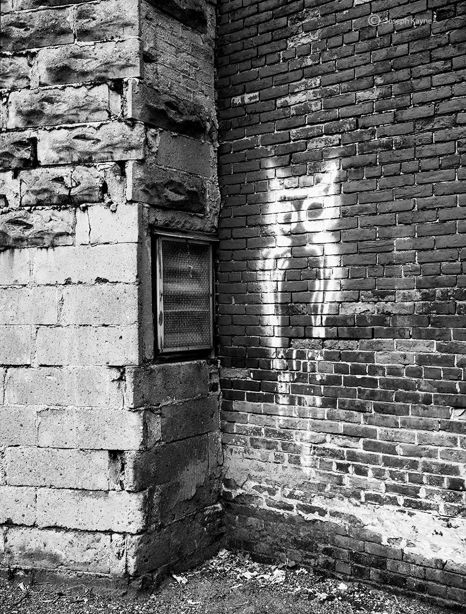 owl,graffiti,rochester,new,york, photo