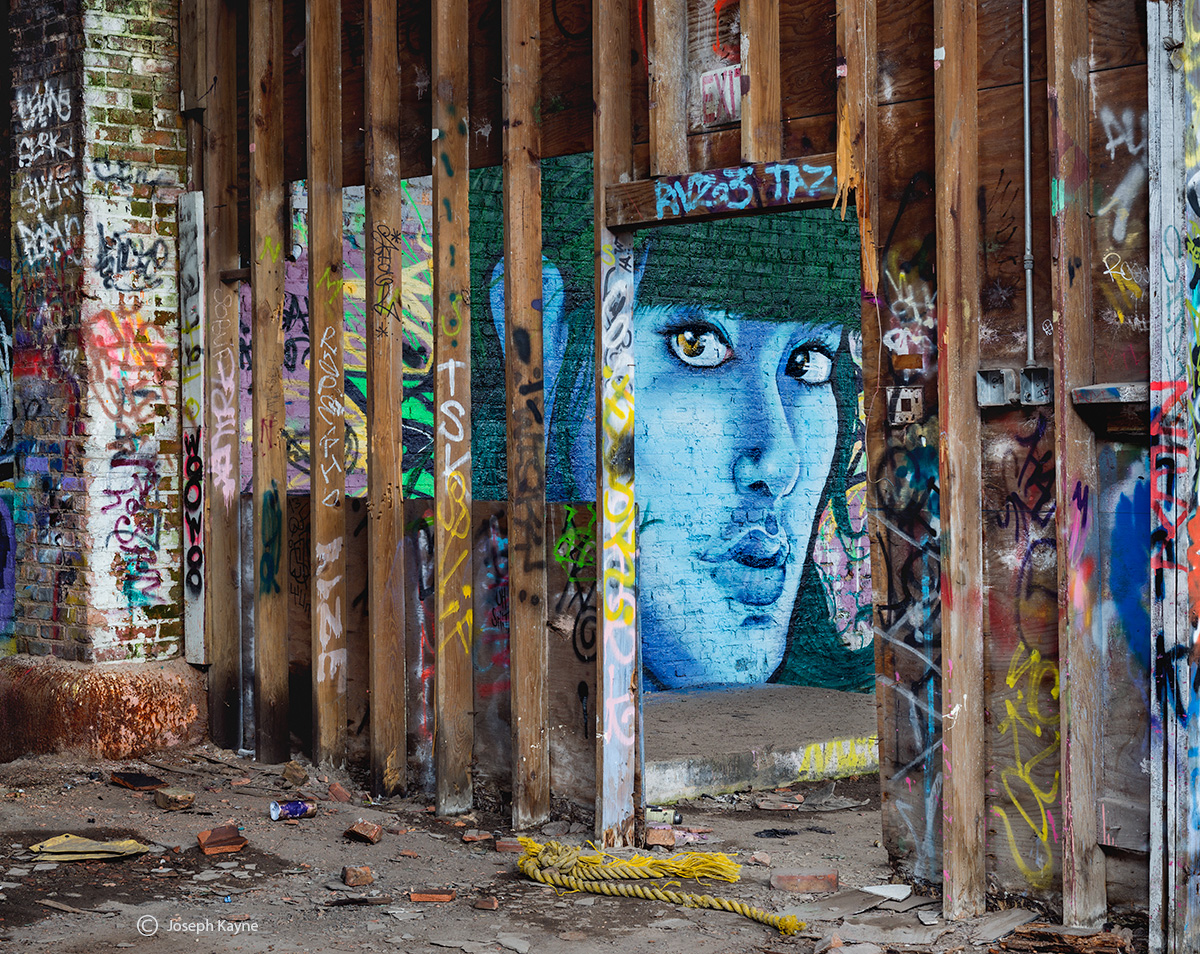abandoned,beuaty,street,art,portrait,mural,chicago,warehouse, photo