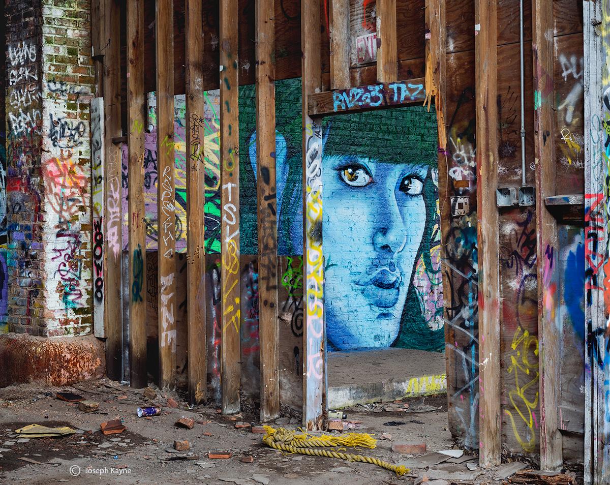 abandoned,beuaty,street,art,portrait,mural,chicago,warehouse, photo