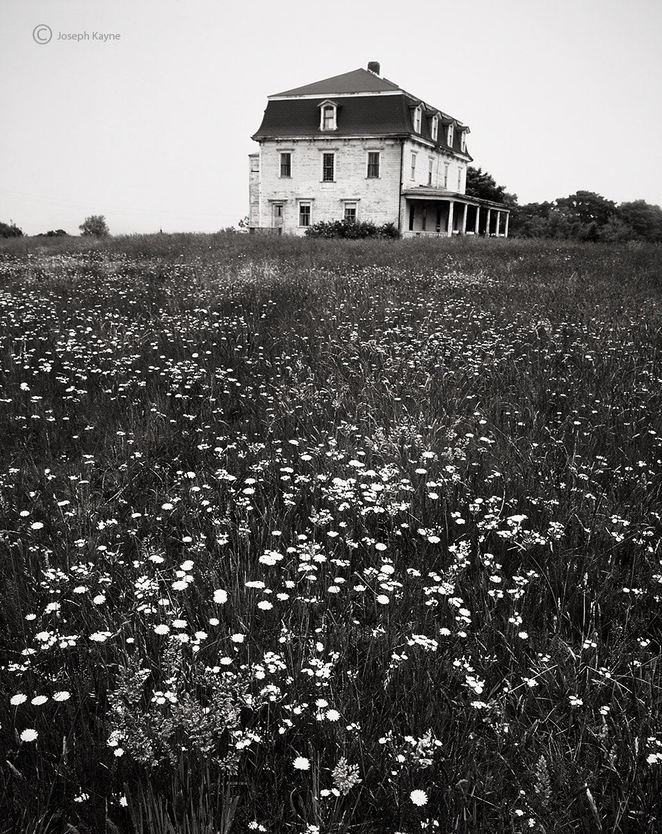 block,island,dreams,abandoned,home,rhode,island, photo
