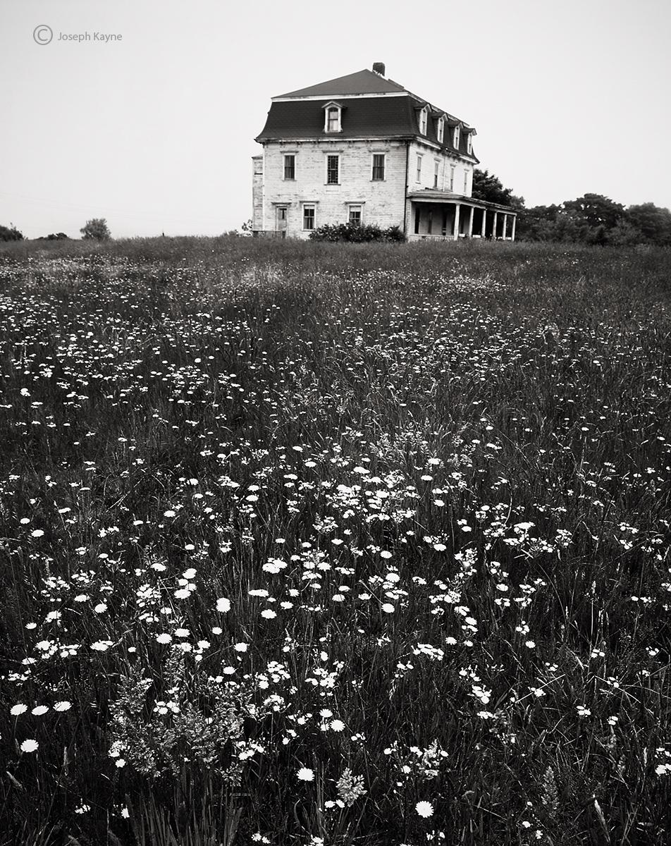 block,island,dreams,abandoned,home,rhode,island, photo