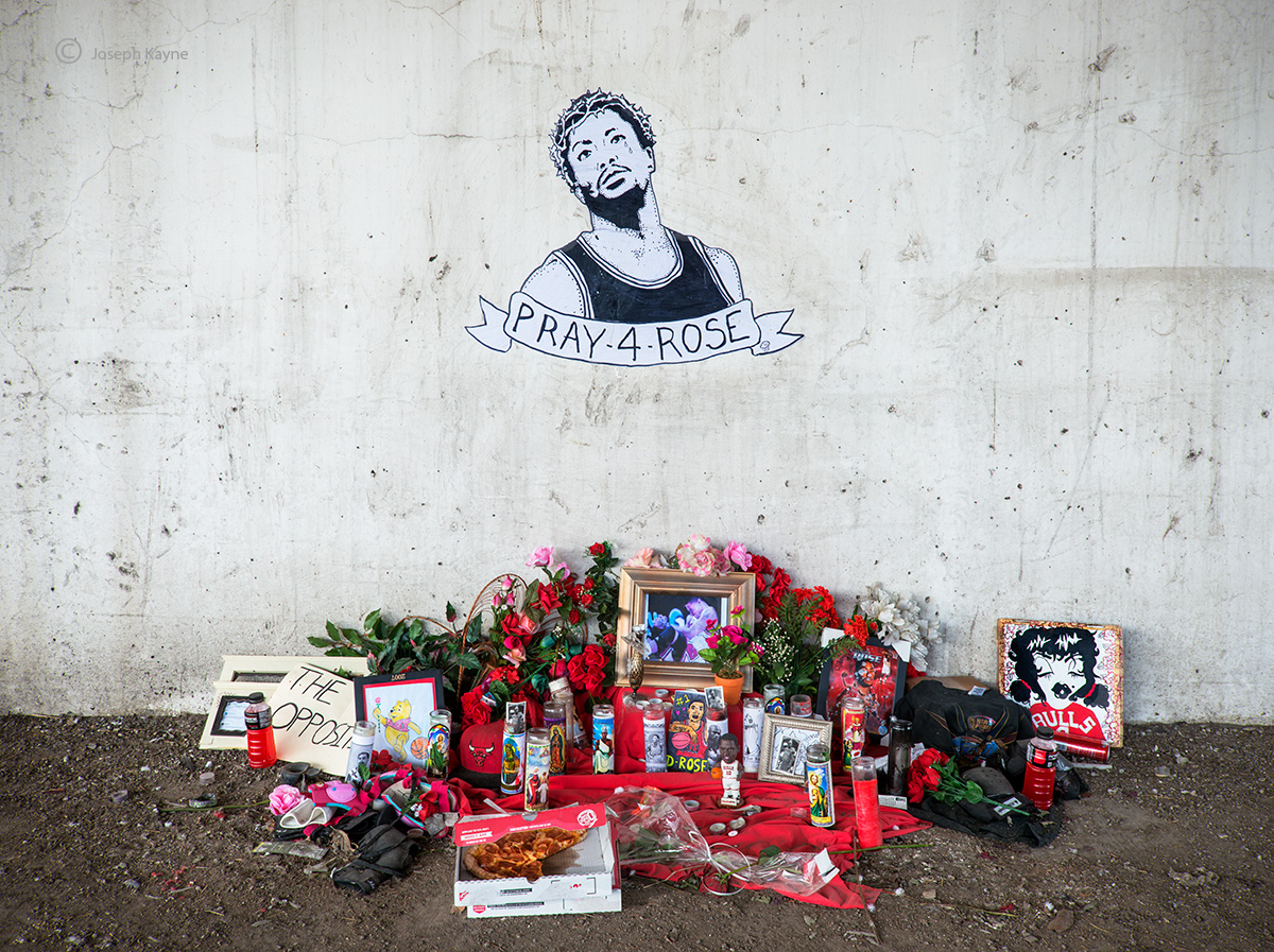 Derrick,Rose,shrine,injured,chicago, photo