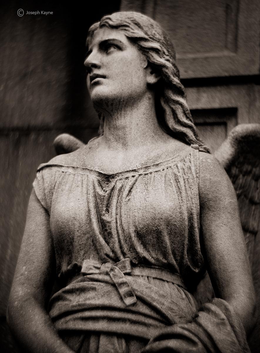 angel,statue,chicago, photo