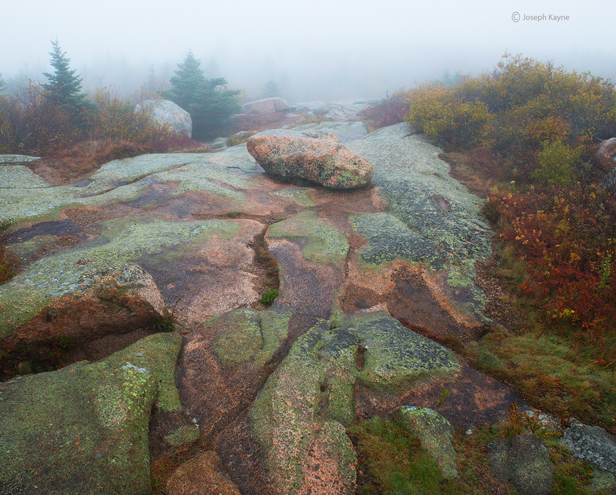 granite,formations,cadillac,mountain,foggy,acadia,national,park,maine, photo