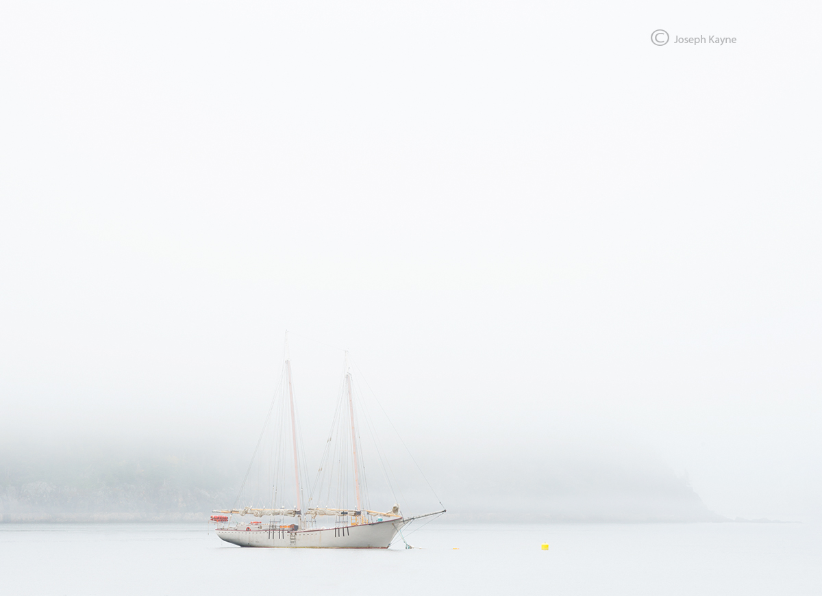 foggy,maine,sailboat,bar,harbor, photo