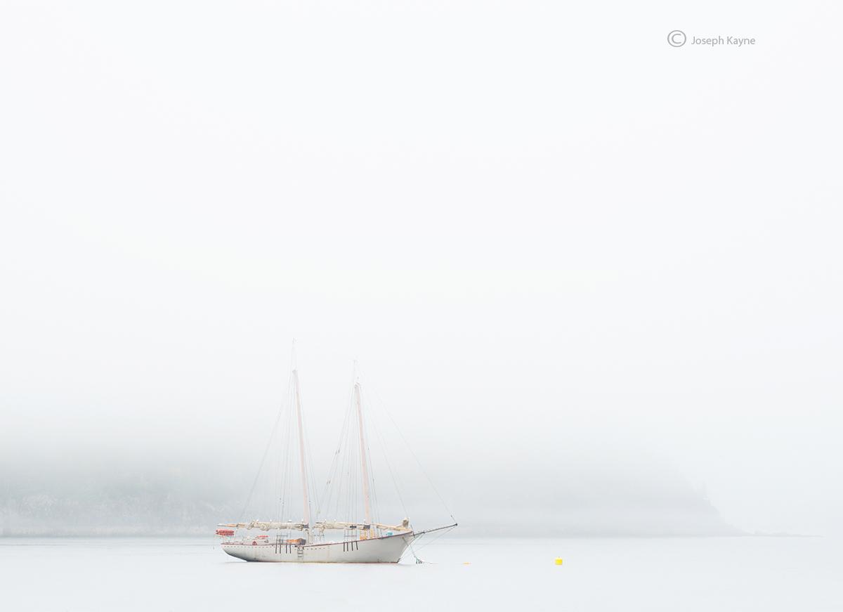 foggy,maine,sailboat,bar,harbor, photo