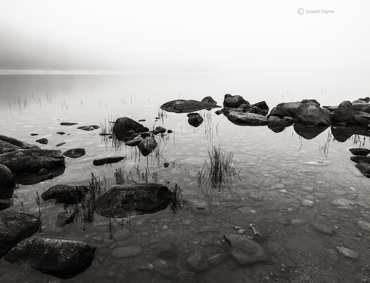 foggy,morning,maine,pond, photo