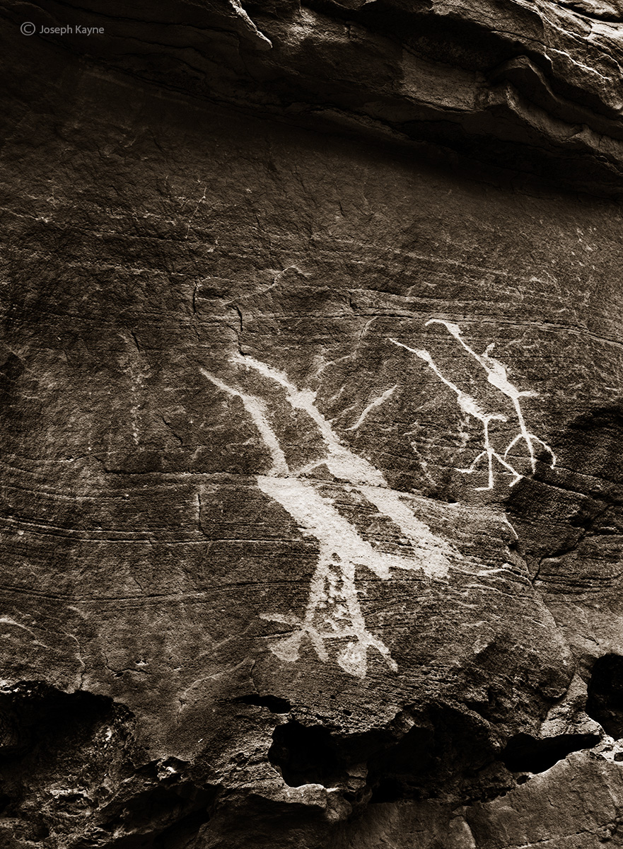 high,stepper,panel,ancestral,puebloan,bird,pictographs,colorado,plateau, photo