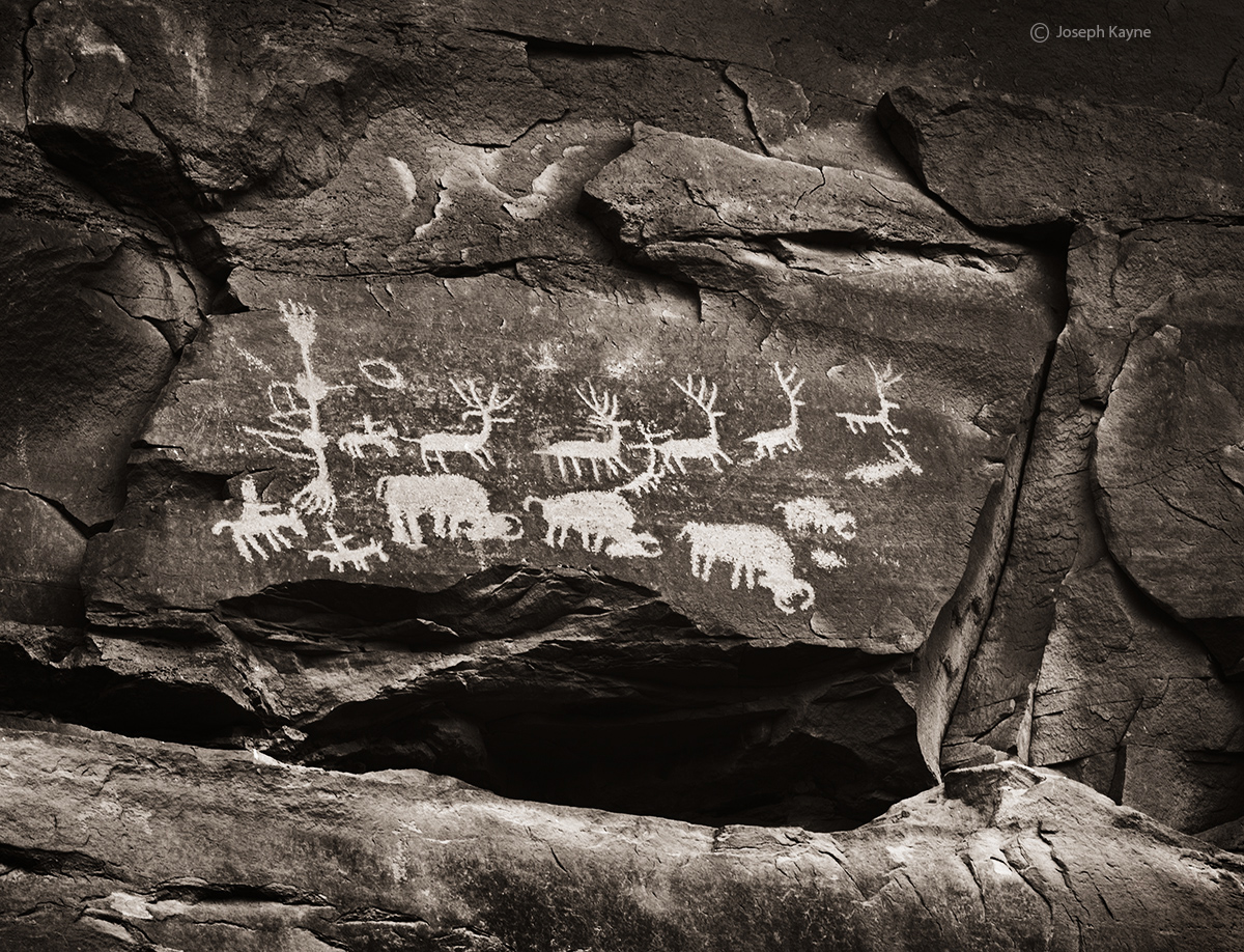 buffalo,hunt,colorado,plateau,ancestral,puebloan,petroglyphs, photo