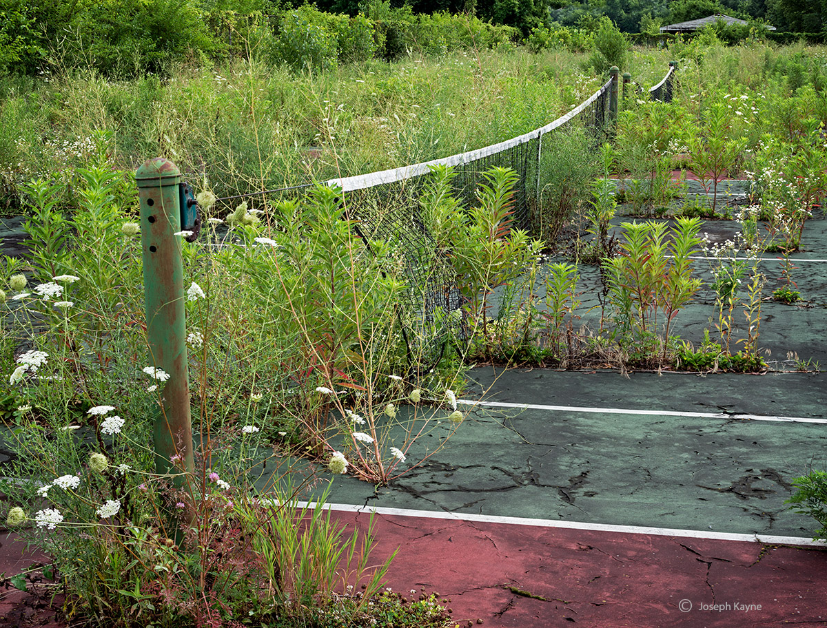 reclamation,abandoned,tennis,court,rust,belt, photo