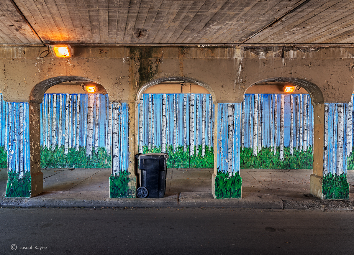 aspen,grove,chicago,viaduct,street,art, photo