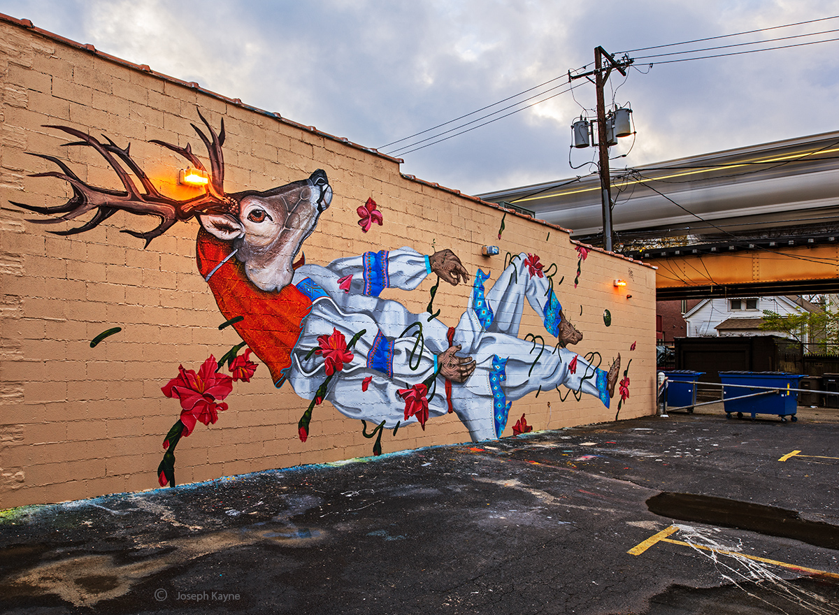 drive,by,deer,mural,diske,uno,passing,train,chicago, photo