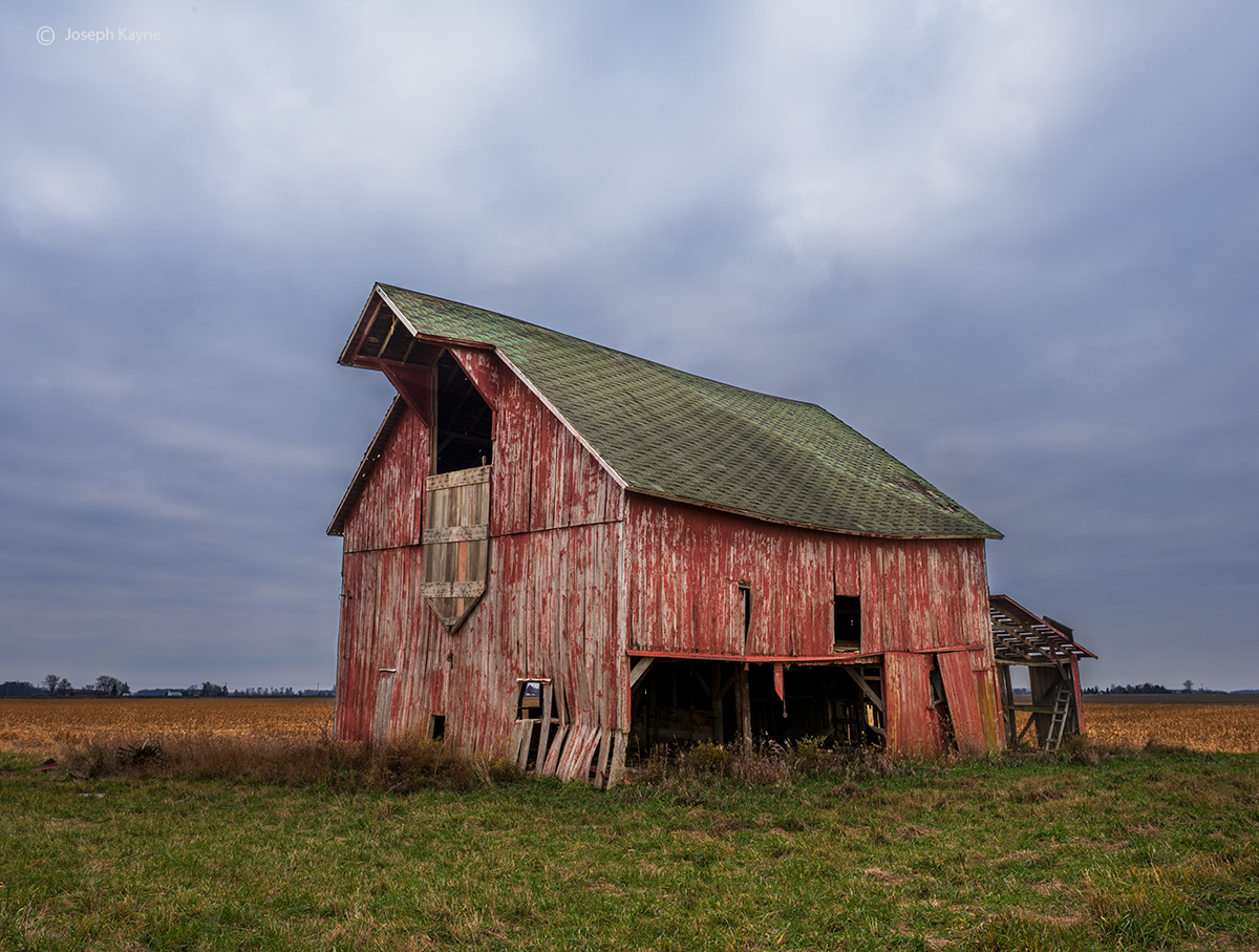 old,prairie,monarch,resilient,midwest,barn,indiana, photo