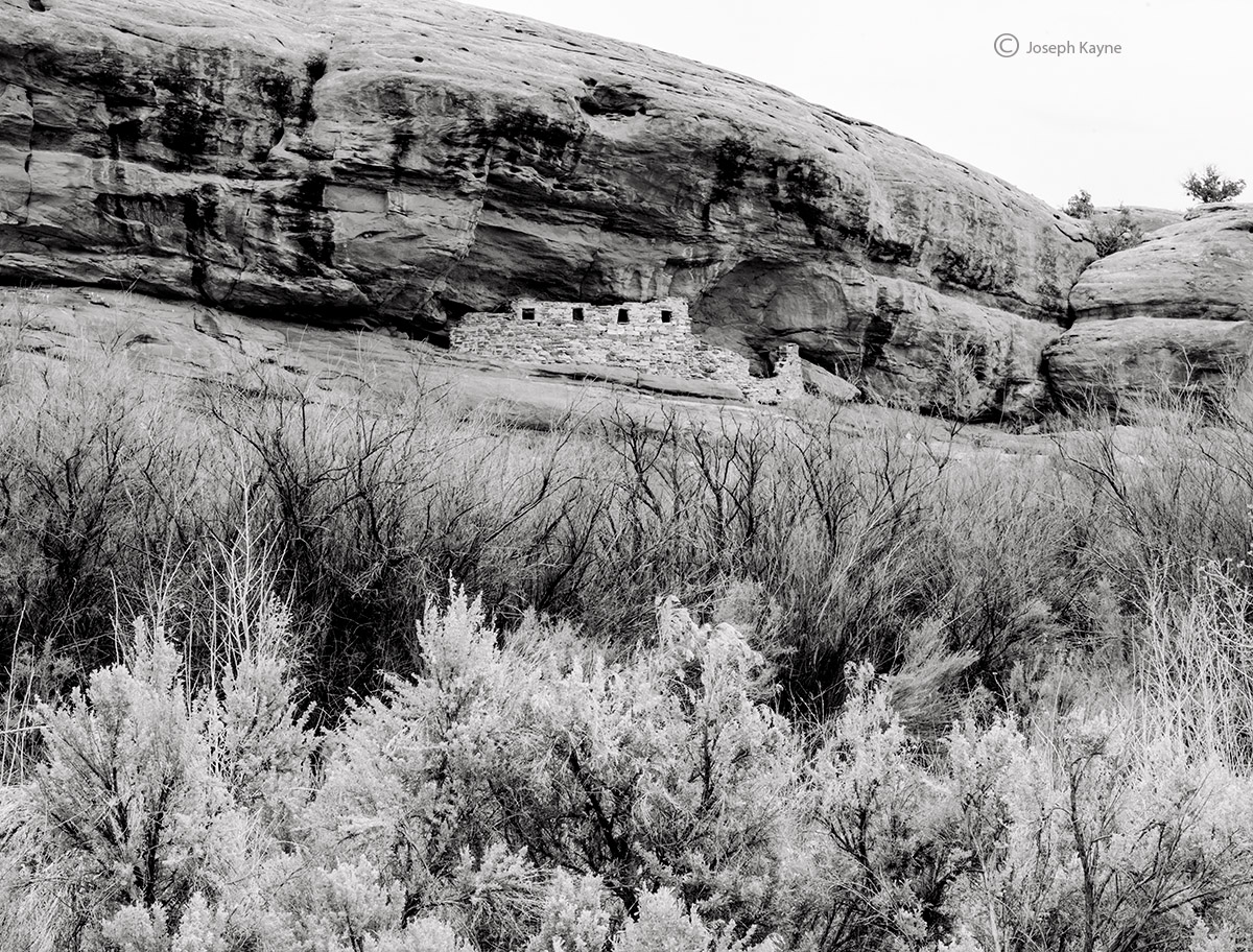 anasazi,lodge,cliff,dwellwing,bears,ears,national,monument,ancestral,puebloan, photo