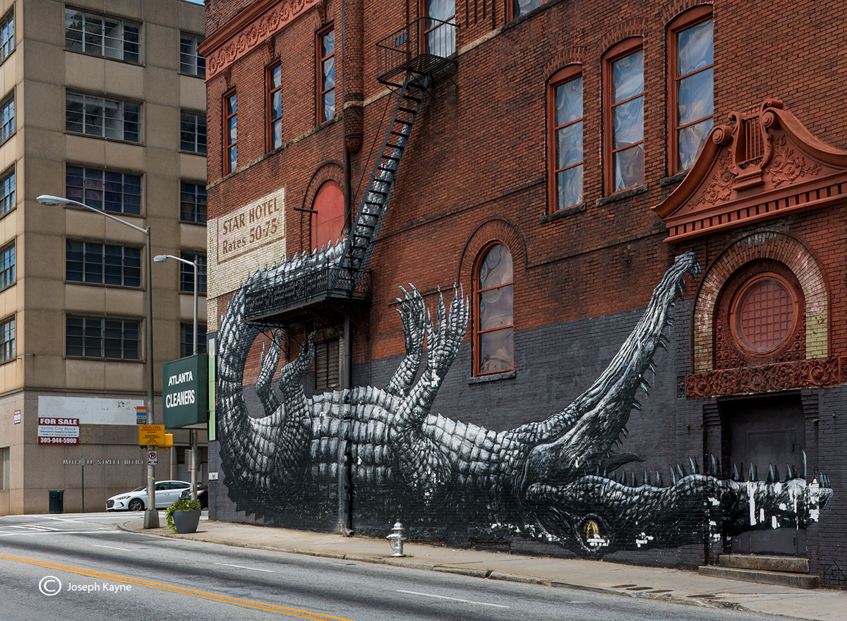 the,streets,are,dangerous,roa,alligator,street,art, photo