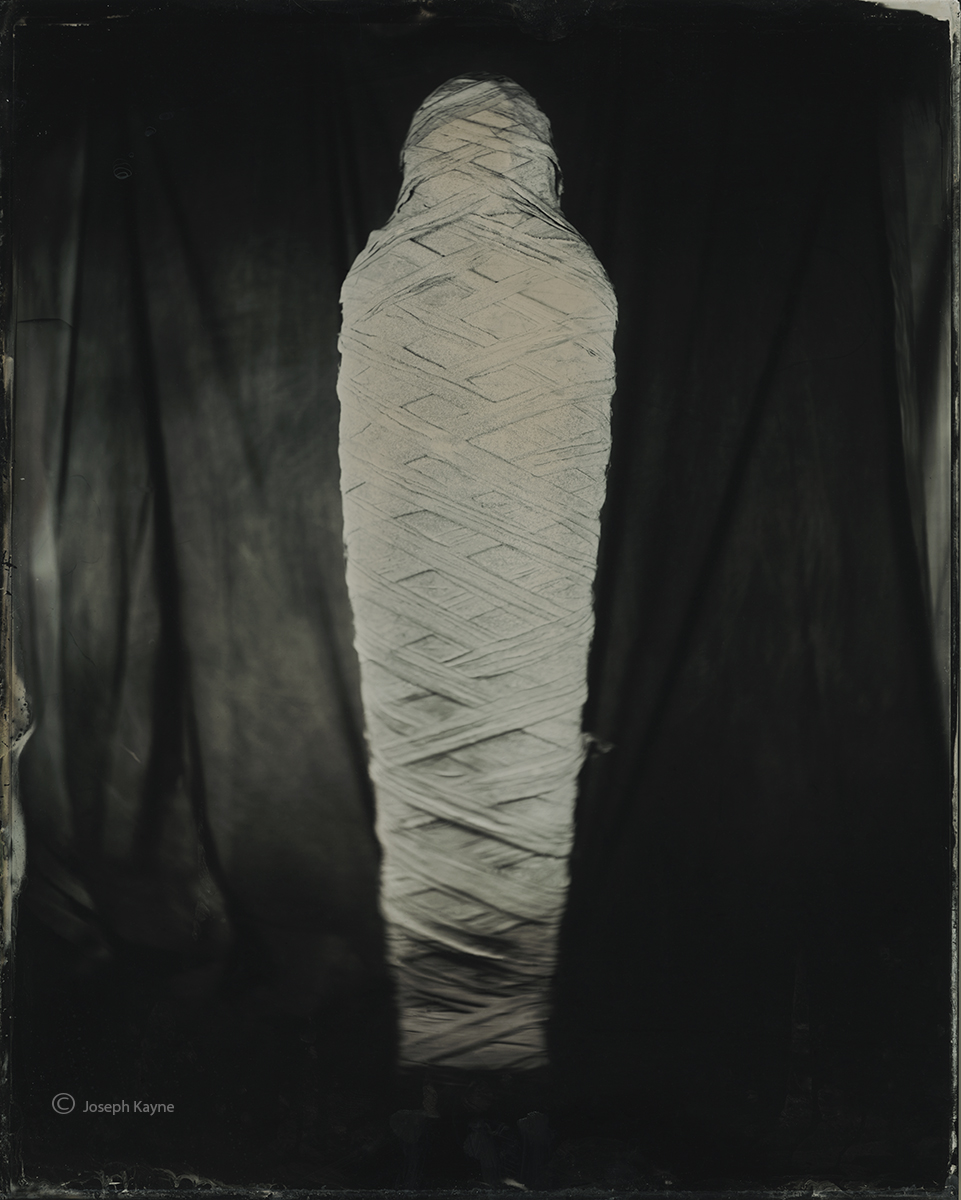 the,mummy,wet,plate,chicago, photo