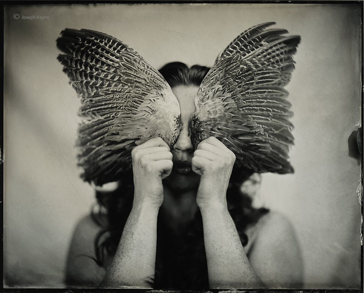The Owl BallerinaWet Plate Collodion Tintype