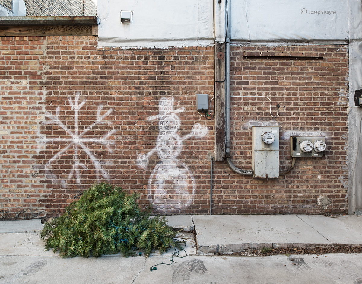 Abandoned Christmas Tree In A Chicago Alley