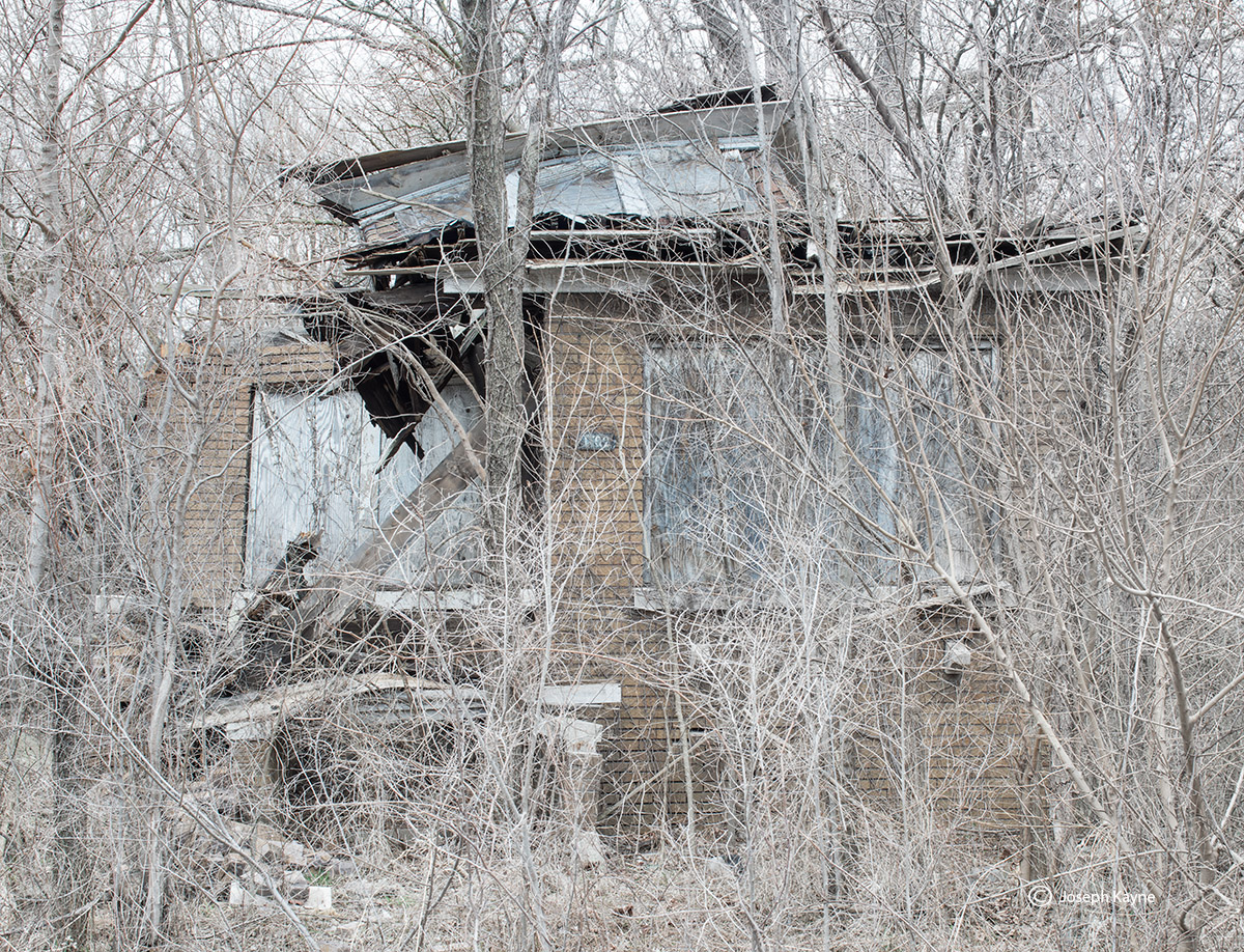 ghosts,landscape,photography,urban,decay,blight,urbex,abandoned,houses,homes,new,topgraphics,nature,taking,over,rust,belt,chicago,gary,detroit,cleveland,milwaukee,toledo,erie,buffalo, photo