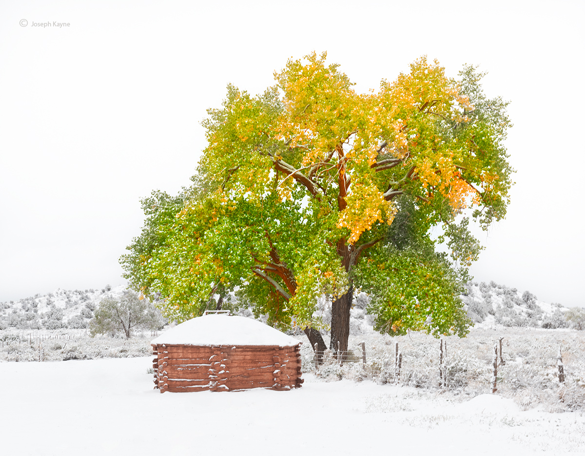 old,navajo,hogan,snow,cottonwood,tree,hubbell,trading,post,Ganado,arizona, photo