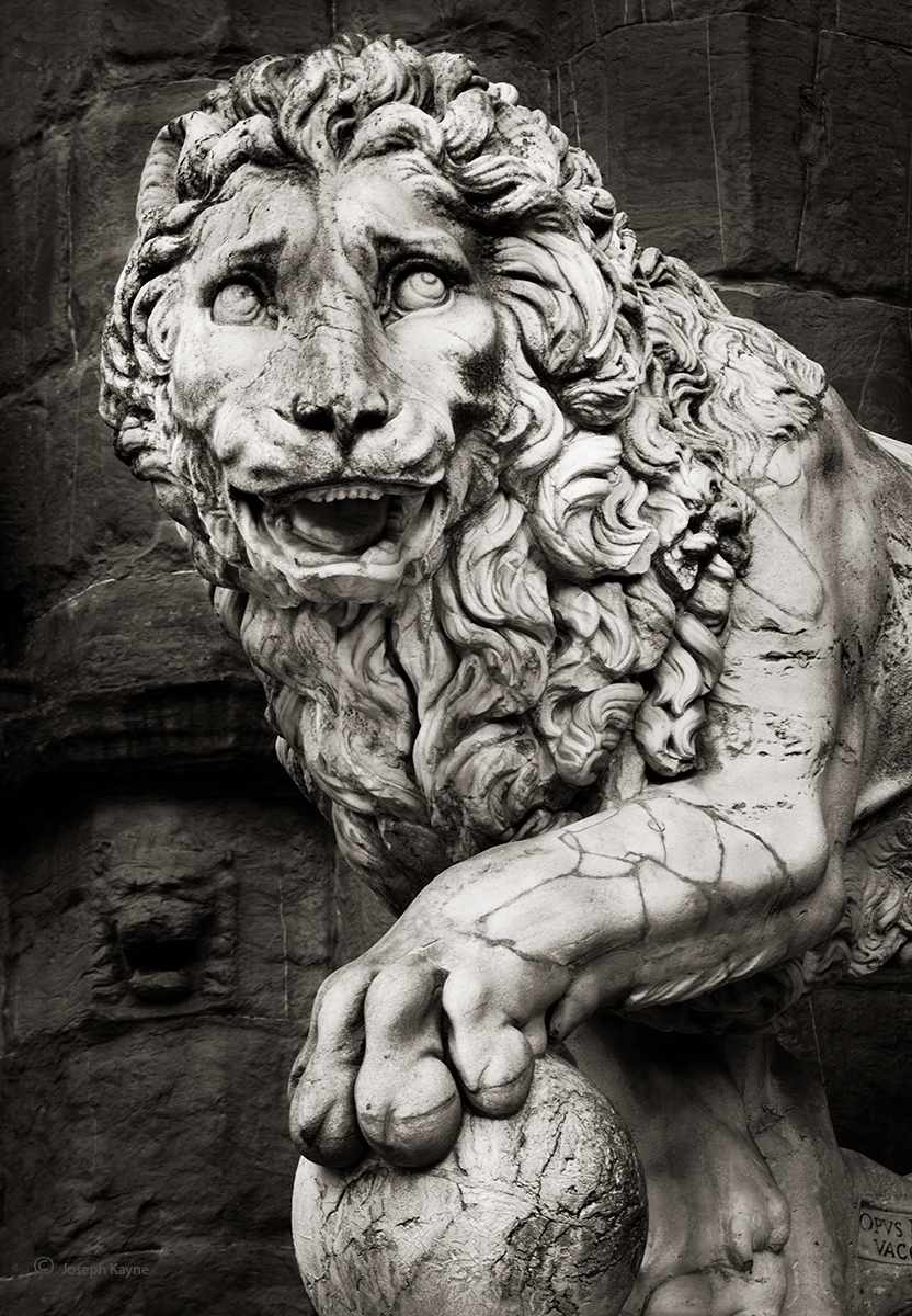 into,the,renaissance,lion,statue,florence,italy, photo