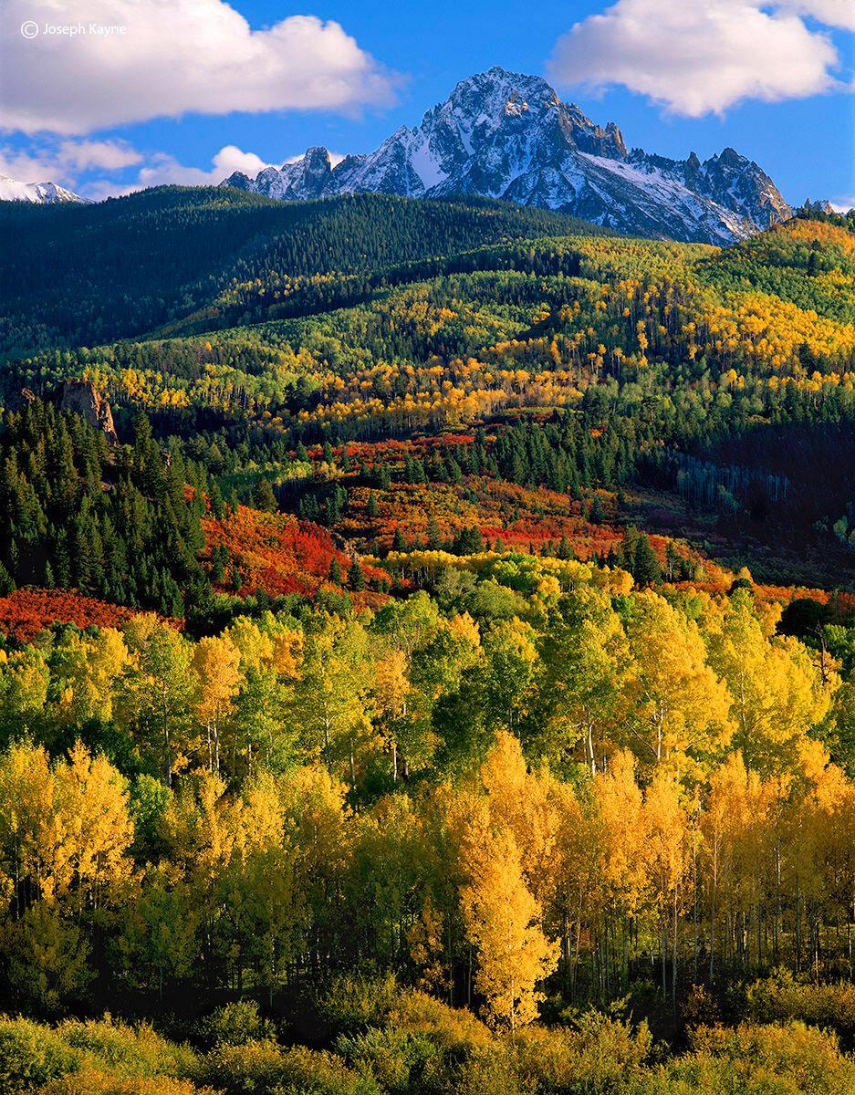 mount,sneffels,splendor,atumn,colorado, photo